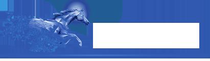 Gallop Technology Group